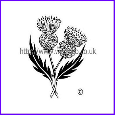 You can order Double Scottish Thistle Medium Clear Cling Stamp